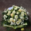 Coussin pastel blanc et vert - 3 tailles disponibles
