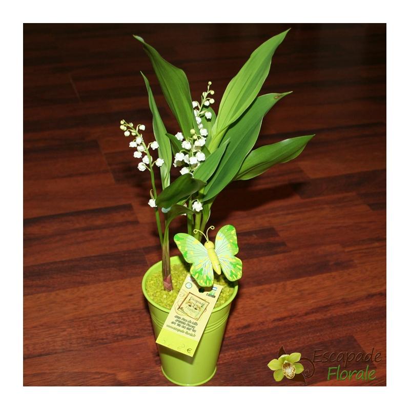 muguet en pot de 3 griffes escapade florale. Black Bedroom Furniture Sets. Home Design Ideas