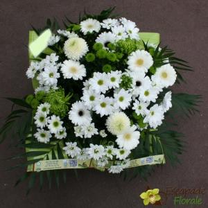 Coussin Blanc et Vert
