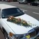 Dessus de capot Limousine