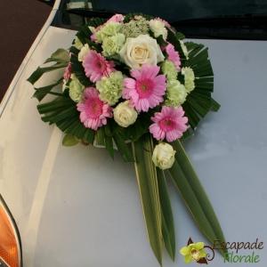 Dessus de capot rose et blanc
