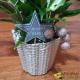 Spatifilum en vase de Noël