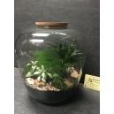 terrarium  1-2  43€