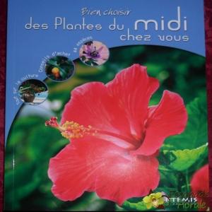 Des plantes du Midi chez nous
