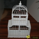 Cage Blanche