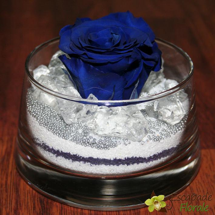 rose eternelle - escapade florale