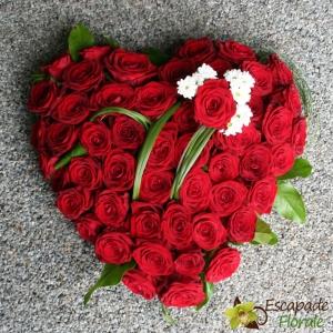 Coeur de roses rouges (Coussin)