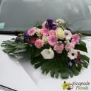Dessus de capot rose et violet