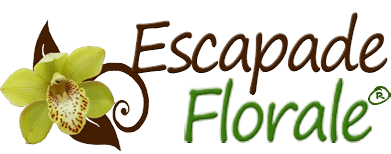 Escapade Florale